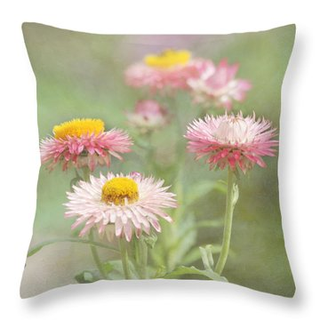 Afternoon Delight Throw Pillow by Kim Hojnacki