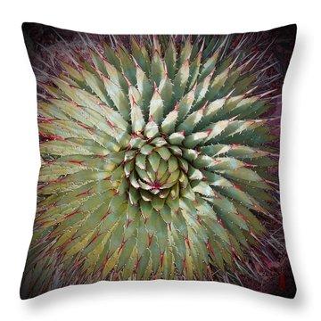 Agave Spikes Throw Pillow by Alan Socolik