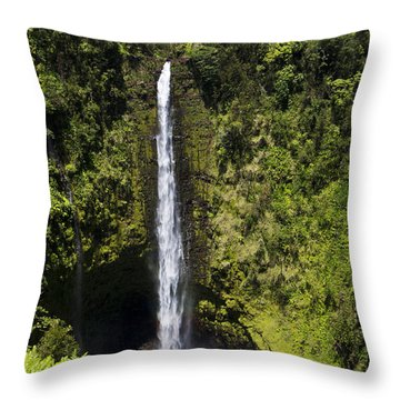 Akaka Falls Throw Pillow by Mike Herdering