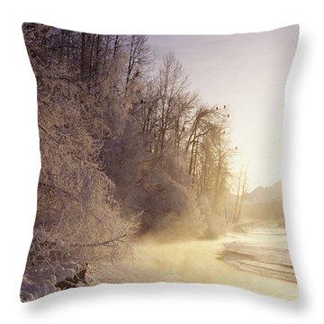 Alaska, Haines Bald Eagle Preserve Throw Pillow by John Hyde