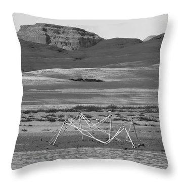 Alien Wreckage Bw - Lake Powell Throw Pillow by Julie Niemela