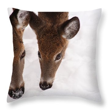 All Eyes On Me Throw Pillow by Karol Livote