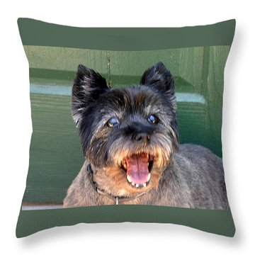 All I Want For Christmas Throw Pillow by Jay Milo