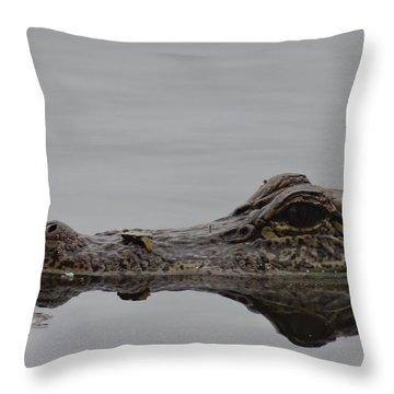 Alligator Eyes Throw Pillow by Dan Sproul