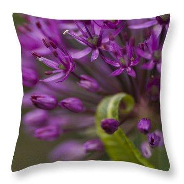 Allium Curl Throw Pillow by Anne Gilbert