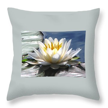Alone Throw Pillow by Angela Davies