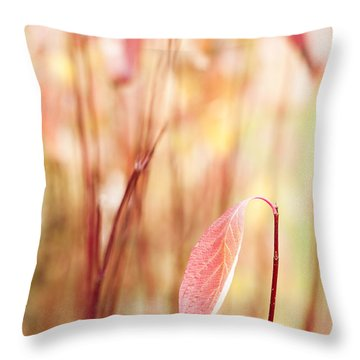 Alone Throw Pillow by Anne Gilbert