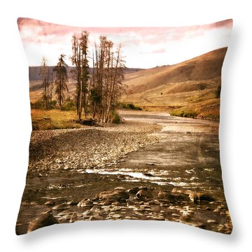 Along The Larmar River 2 Throw Pillow by Marty Koch