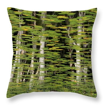 Altered Reflections Throw Pillow by Howard Ferrier
