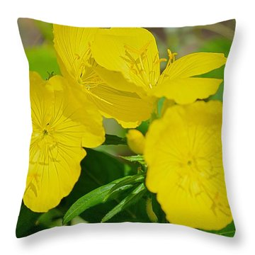 Amarillo Sunshine Throw Pillow by Sonali Gangane