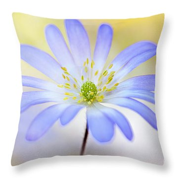 Anemone Blanda Throw Pillow by Jacky Parker