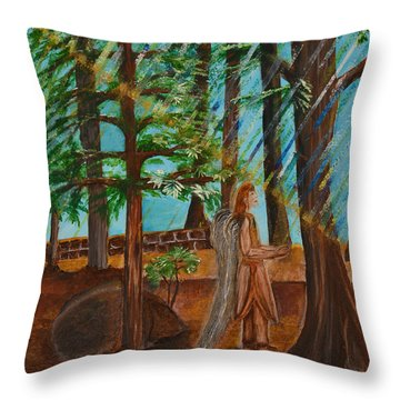 Angle In Idyllwild Throw Pillow by Cassie Sears