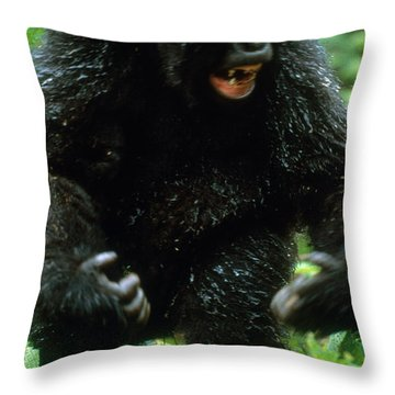 Angry Mountain Gorilla Throw Pillow by Art Wolfe