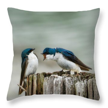 Angry Swallow Throw Pillow by Jai Johnson