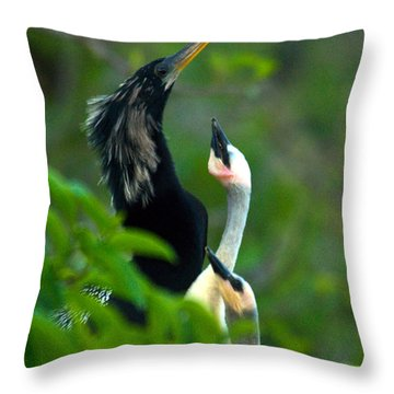 Anhinga Adult With Chicks Throw Pillow by Mark Newman