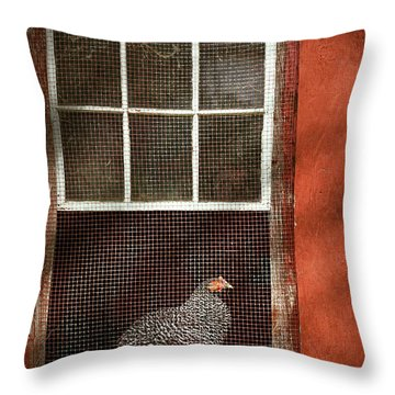 Animal - Bird - Chicken In A Window Throw Pillow by Mike Savad
