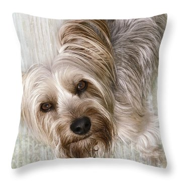 animals - dogs - Rascal Throw Pillow by Ann Powell