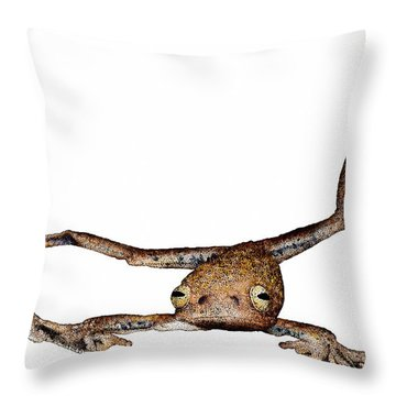 Annam Flying Frog Throw Pillow by Roger Hall