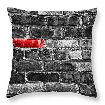 Another Brick In The Wall Throw Pillow by Delphimages Photo Creations