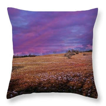 Another Day Throw Pillow by Barbara S Nickerson