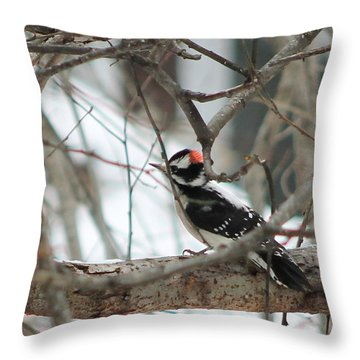 Anybody Home Throw Pillow by Leone Lund