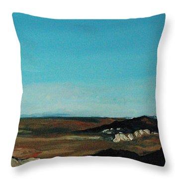 Anza - Borrego Desert Throw Pillow by Joseph Demaree