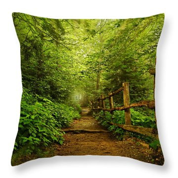 Appalachian Trail At Newfound Gap Throw Pillow by Stephen Stookey