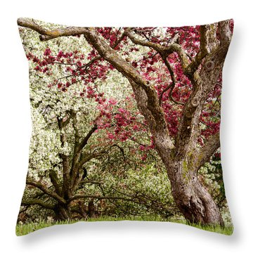 Apple Blossom Colors Throw Pillow by Joe Mamer
