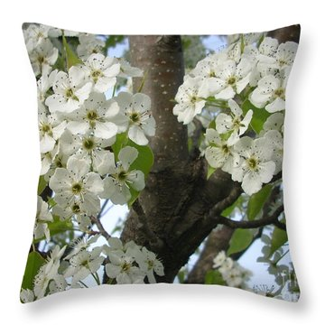 Apple Blossoms Throw Pillow by Randi Shenkman