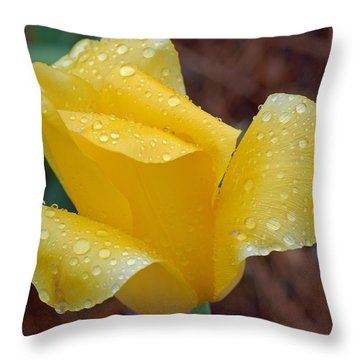 April Showers Throw Pillow by Suzanne Gaff