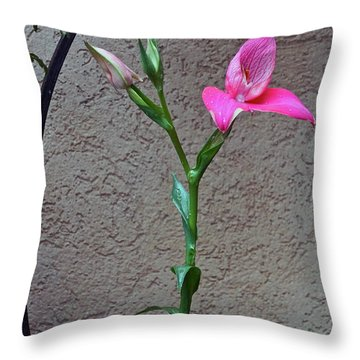 Arcs Of An Orchid Throw Pillow by Byron Varvarigos
