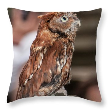 Are You My Mother Throw Pillow by John Haldane