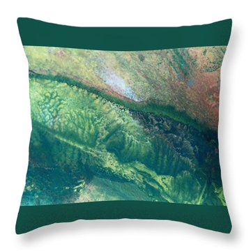 Ariel View Of Venus Throw Pillow by James Welch