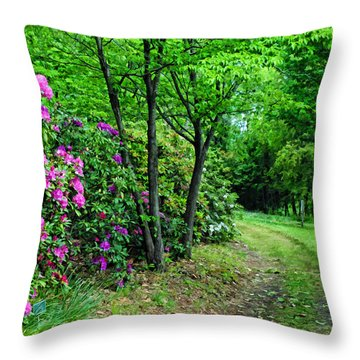Around The Bend Throw Pillow by Kenny Francis