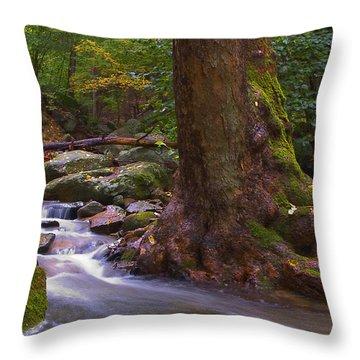 As The River Runs Throw Pillow by Karol Livote
