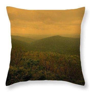 Assurance Of Peace Throw Pillow by Nina Fosdick