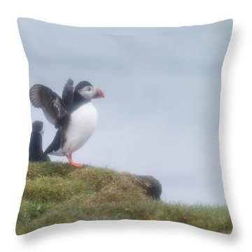 Atlantic Puffins Fratercula Arctica Throw Pillow by Panoramic Images