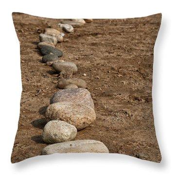 Atres 5 Throw Pillow by Karol Livote