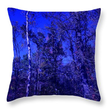 Attitude Blue Throw Pillow by Nina Fosdick