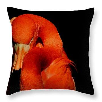Attitude Throw Pillow by Stuart Harrison