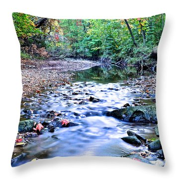 Autumn Arrives Throw Pillow by Frozen in Time Fine Art Photography