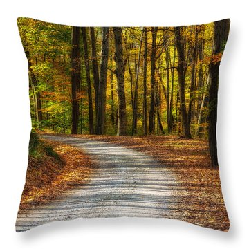 Autumn Beauty Throw Pillow by Dale Kincaid
