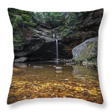 Autumn Falls Throw Pillow by James Dean