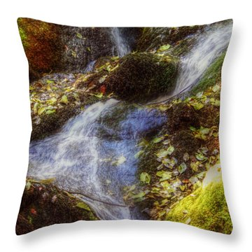 Autumn Falls Throw Pillow by Melanie Lankford Photography