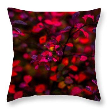 Autumn Flames 2 - Square Throw Pillow by Alexander Senin