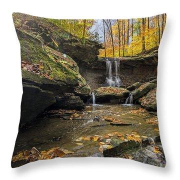 Autumn Flows Throw Pillow by James Dean