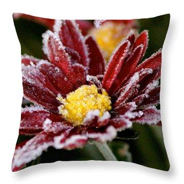 Autumn Frost Throw Pillow by Tiffany Erdman
