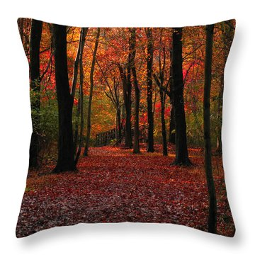 Autumn IIi Throw Pillow by Raymond Salani III