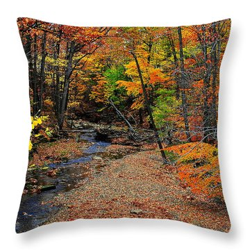 Autumn In Full Bloom Throw Pillow by Frozen in Time Fine Art Photography
