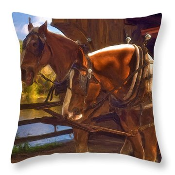 Autumn In Sturbridge Throw Pillow by Joann Vitali